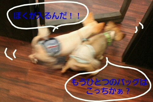 b0130018_12512754.jpg