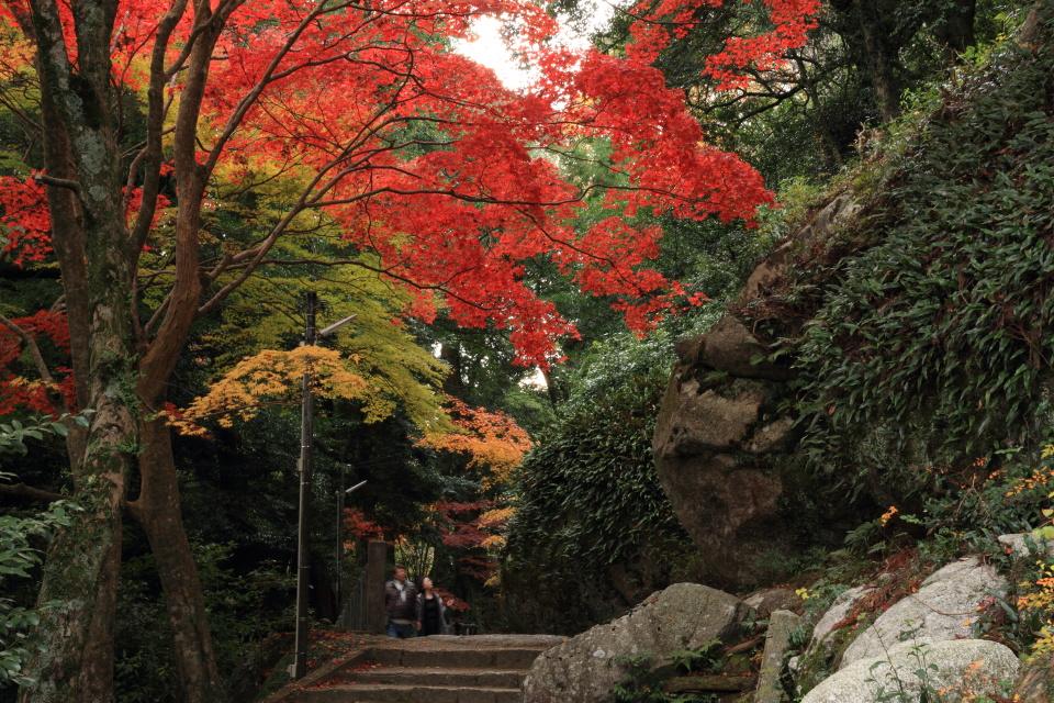 笠置山もみじ公園_a0203733_202826100.jpg