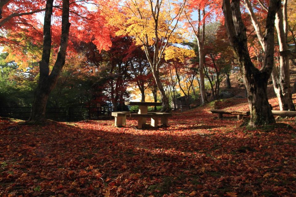 笠置山もみじ公園_a0203733_21422842.jpg