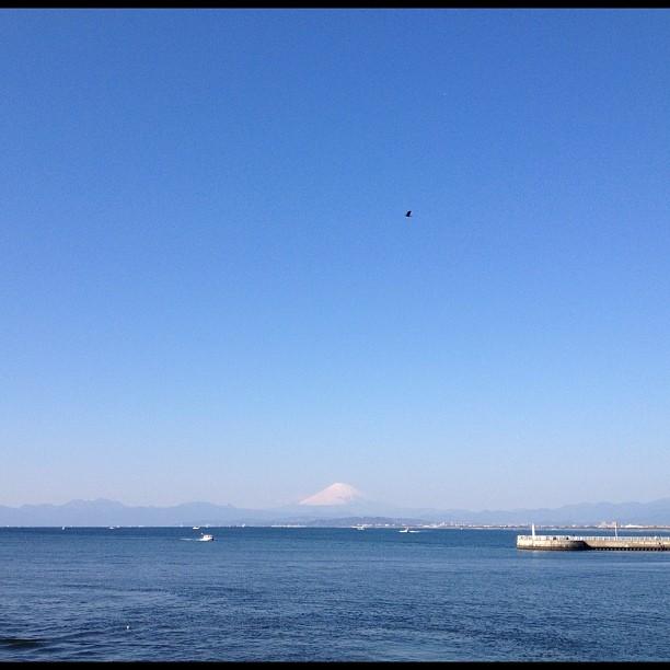 え~な!江の島ありがと祭りでした!_f0310448_2175180.jpg