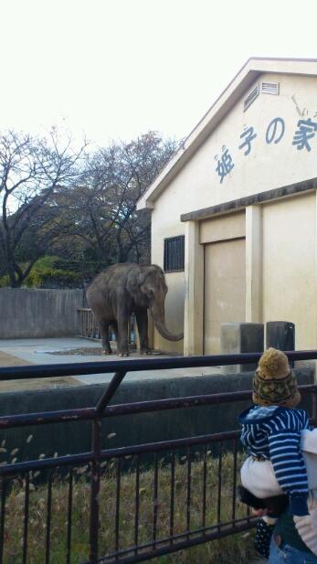 休日。動物園へ行く。_e0326688_15393962.jpg
