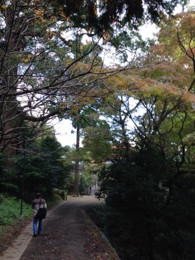 如庵作陶展・稲佐神社_f0232994_163436.jpg