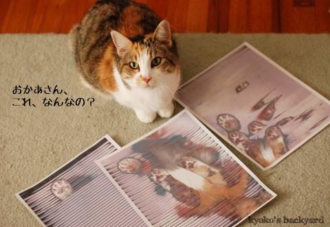 猫をスキャン&コピーしたら_b0253205_2101322.jpg