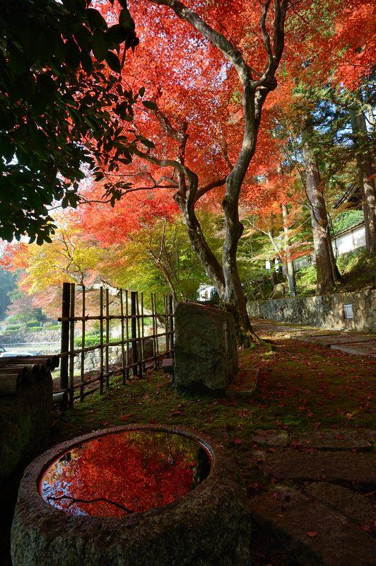 2013京都の紅葉!・内緒のお寺_f0032011_19473630.jpg
