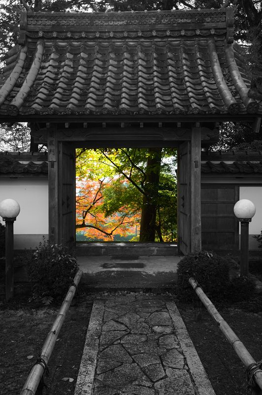 2013京都の紅葉!・内緒のお寺_f0032011_19572899.jpg
