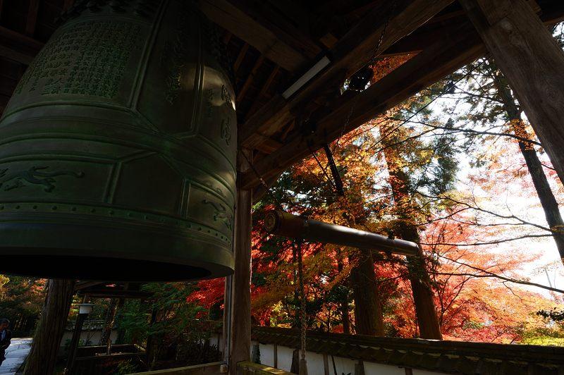 2013京都の紅葉!・内緒のお寺_f0032011_19574973.jpg