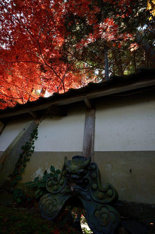 2013京都の紅葉!・内緒のお寺_f0032011_19584939.jpg