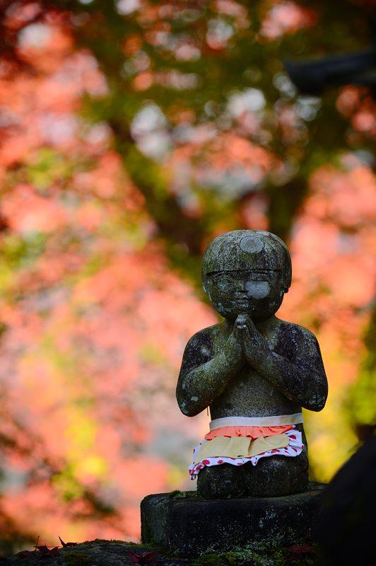 2013京都の紅葉!・内緒のお寺_f0032011_19591439.jpg