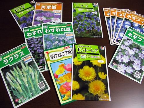 初冬の庭_f0129726_22385957.jpg