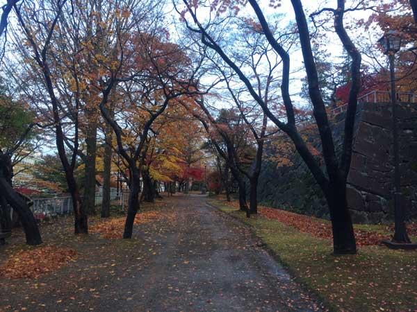 木々の葉も残りわずか_f0154626_1802864.jpg