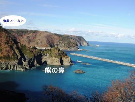 「海風ファーム」のおじぃさん_b0206037_1740282.jpg