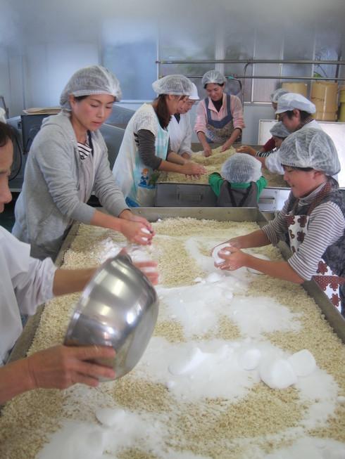 お味噌の手作り体験 in 三潴郡大木町_b0206253_15111589.jpg