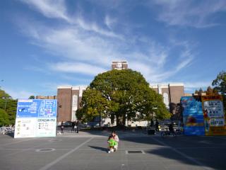 今週末は京大学祭_b0141264_030384.jpg