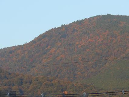 野呂山も晩秋の装い_e0175370_15112286.jpg