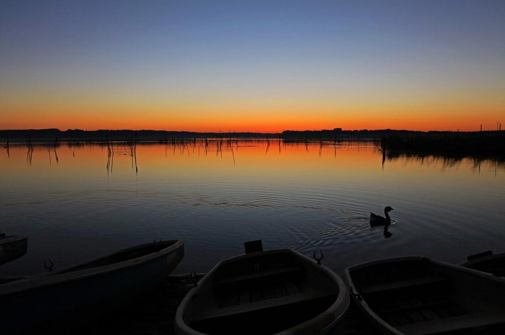 印旛沼ブルーモーメントの夜明け_b0083801_0473048.jpg