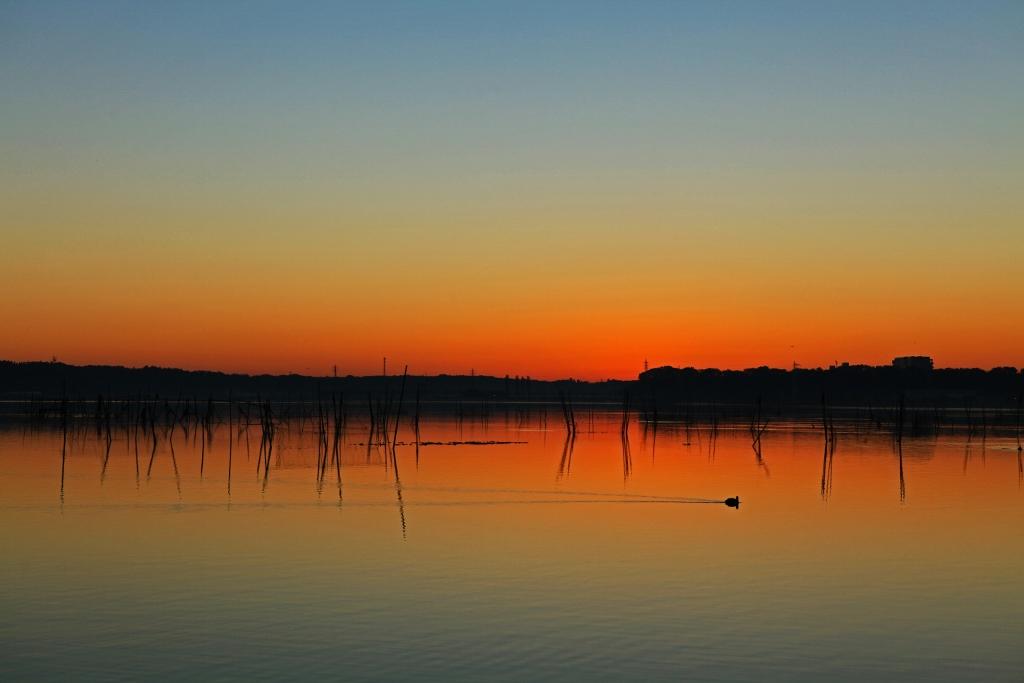印旛沼ブルーモーメントの夜明け_b0083801_0475089.jpg