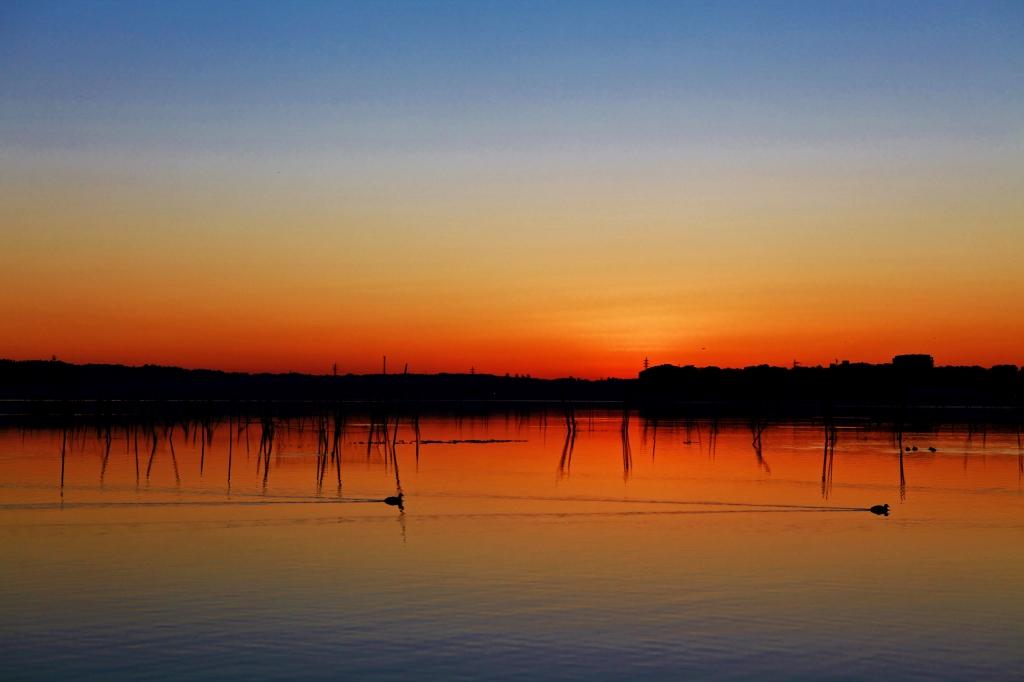 印旛沼ブルーモーメントの夜明け_b0083801_048743.jpg