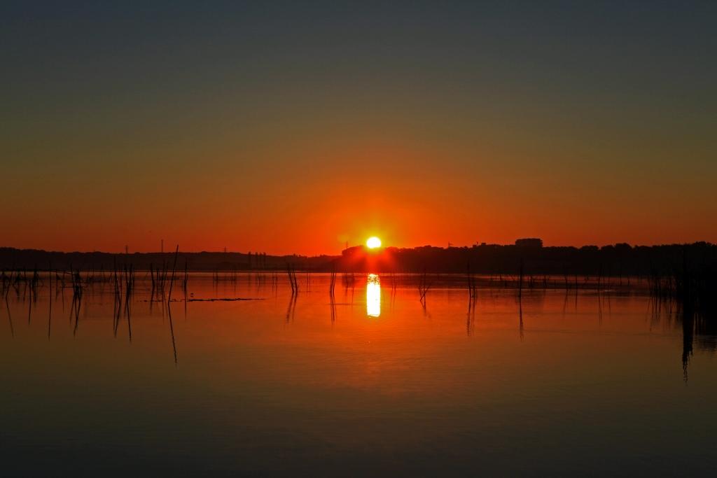 印旛沼ブルーモーメントの夜明け_b0083801_049172.jpg