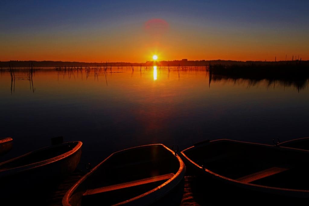 印旛沼ブルーモーメントの夜明け_b0083801_049285.jpg