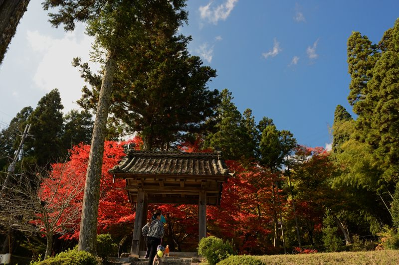 2013京都の紅葉!・龍穏寺_f0032011_16212831.jpg