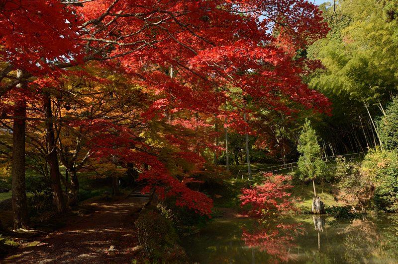 2013京都の紅葉!・龍穏寺_f0032011_16214037.jpg