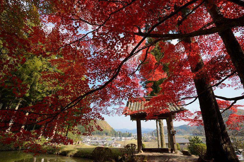 2013京都の紅葉!・龍穏寺_f0032011_1628442.jpg