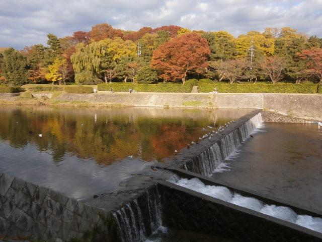 2013鉄研学園祭6 京都大学_a0066027_2234296.jpg