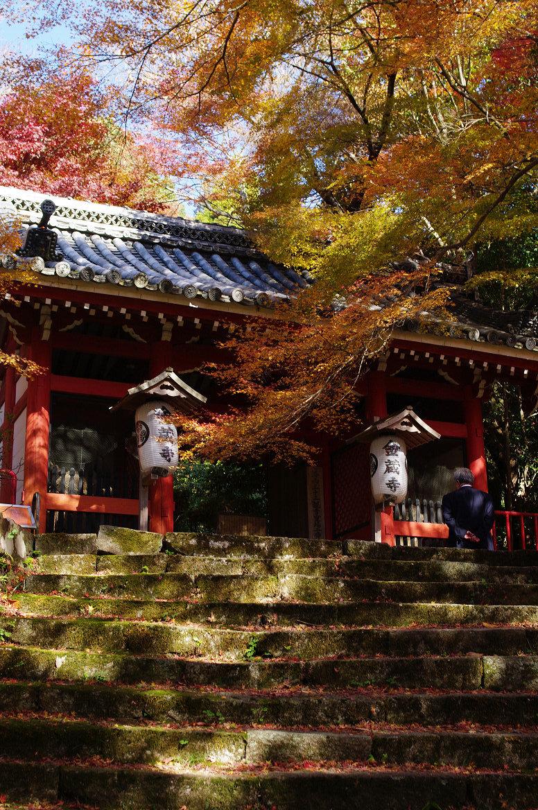 京都の紅葉 2013 〜金蔵寺〜_f0152550_23593938.jpg