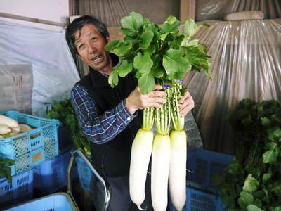 「長尾農園」 安全・安心・美しさにこだわった長尾ブランドの野菜たち_a0254656_18574622.jpg