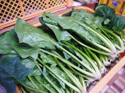 「長尾農園」 安全・安心・美しさにこだわった長尾ブランドの野菜たち_a0254656_191807.jpg