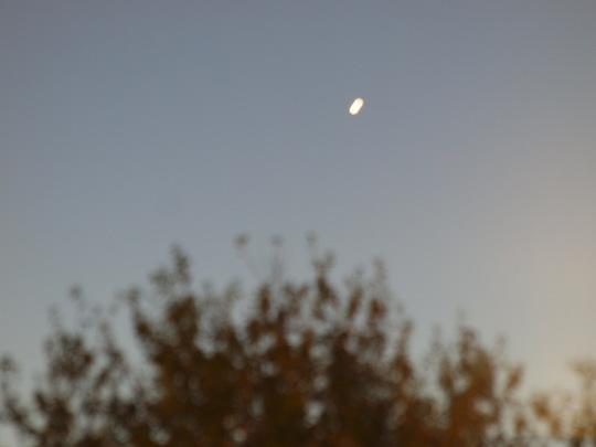 再度アイソン彗星にチャレンジ_e0232277_7224331.jpg