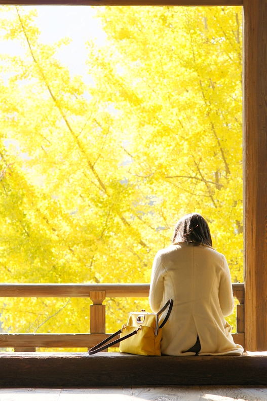 宮島の紅葉2013 その③_f0189086_2111895.jpg