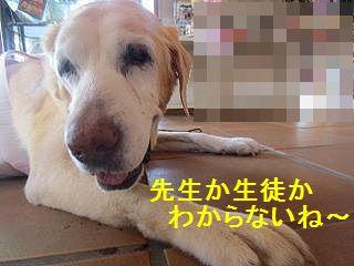 区切りの同窓会_e0222588_1872471.jpg