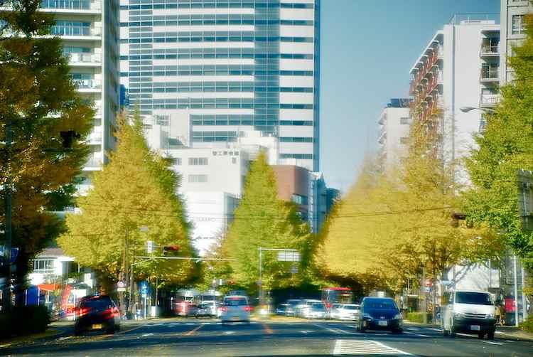 f0170489_20111328.jpg