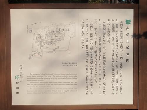 晩秋、千秋公園の紅葉・黄葉・落葉のルクス(lux)・・・その6_c0075701_1923251.jpg