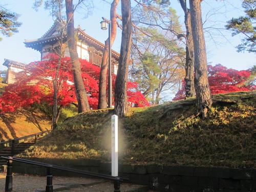 晩秋、千秋公園の紅葉・黄葉・落葉のルクス(lux)・・・その6_c0075701_19233768.jpg