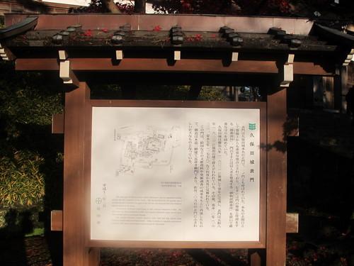 晩秋、千秋公園の紅葉・黄葉・落葉のルクス(lux)・・・その6_c0075701_1923564.jpg