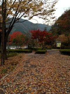 11/6 出雲から広島へ_c0197505_23205330.jpg