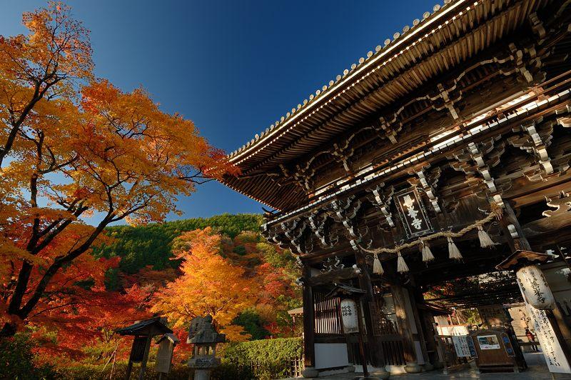 2013京都の紅葉!・善峰寺 其の一_f0032011_17435618.jpg
