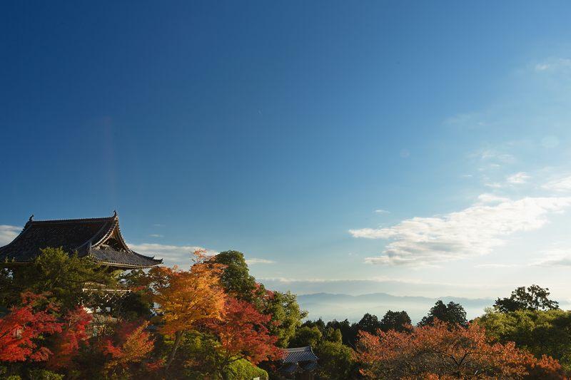 2013京都の紅葉!・善峰寺 其の一_f0032011_17445849.jpg