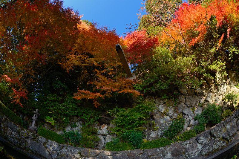 2013京都の紅葉!・善峰寺 其の一_f0032011_17473441.jpg