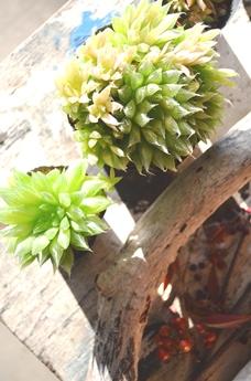 緑も贈り物へ_d0263815_18161842.jpg
