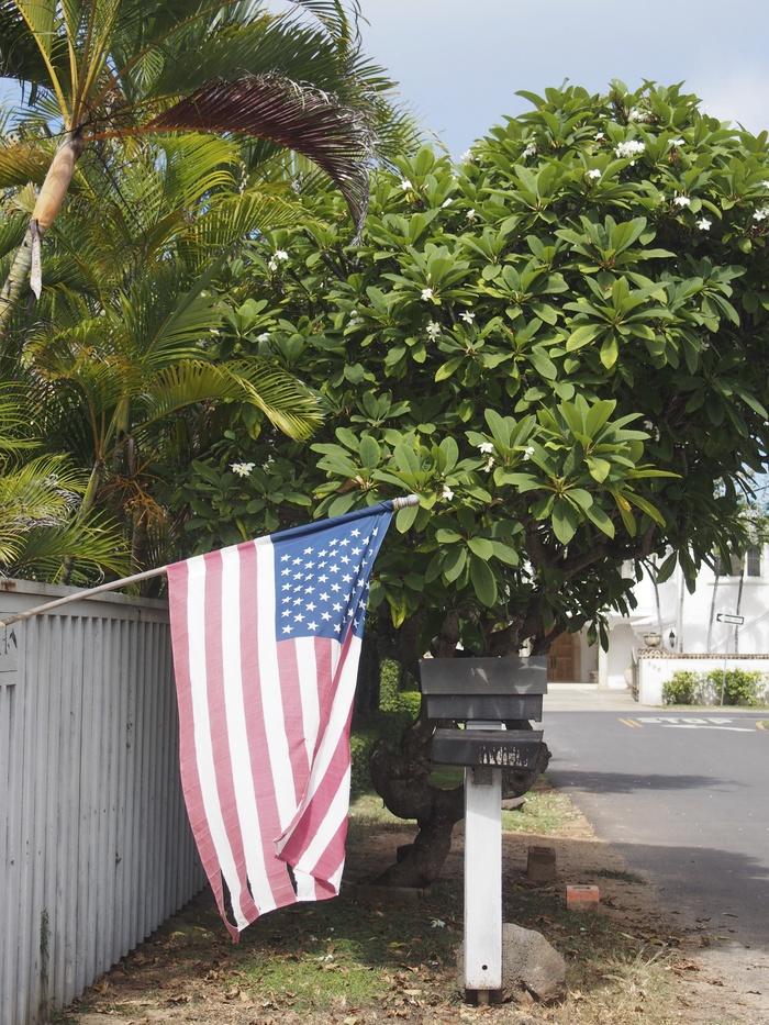 2013 10月 ハワイ(31)  ラニカイビーチへ  幸せ〜_f0062122_115886.jpg