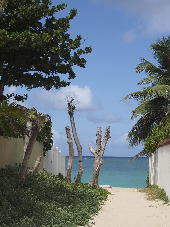 2013 10月 ハワイ(31)  ラニカイビーチへ  幸せ〜_f0062122_153719.jpg