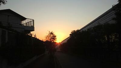 ハムヲさんの朝ラン日記  (2013/11/24)_a0260034_7291839.jpg