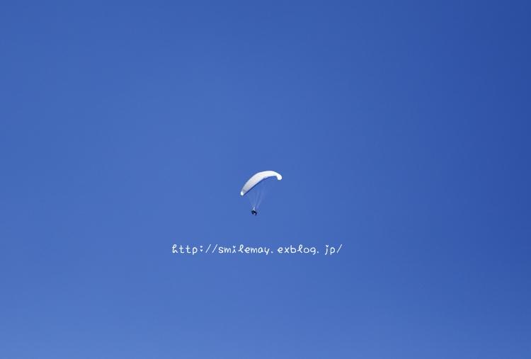 f0252444_21112879.jpg