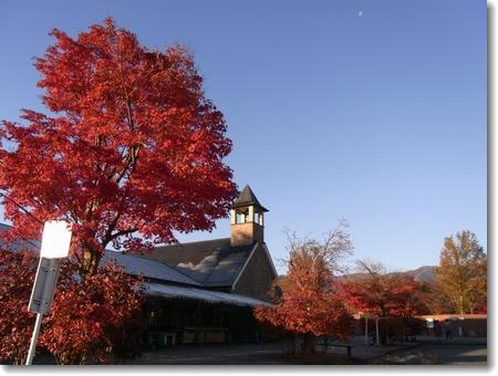 秋景、冬景_c0147448_15554040.jpg