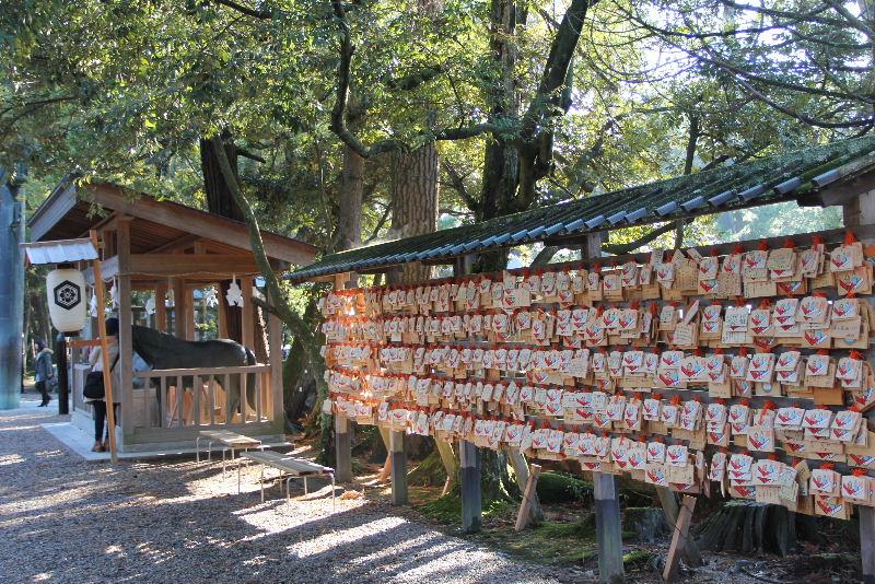 日本神話の旅 【出雲大社】_c0011649_6561997.jpg