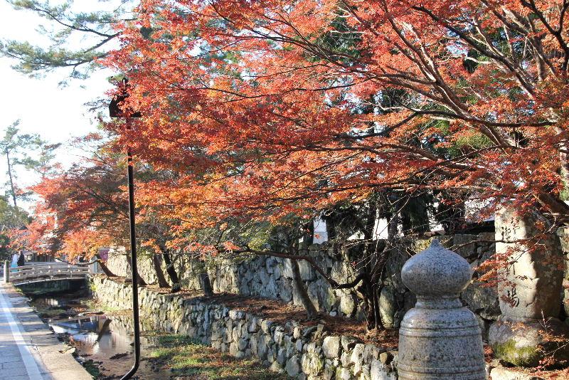 日本神話の旅 【出雲大社】_c0011649_6563874.jpg