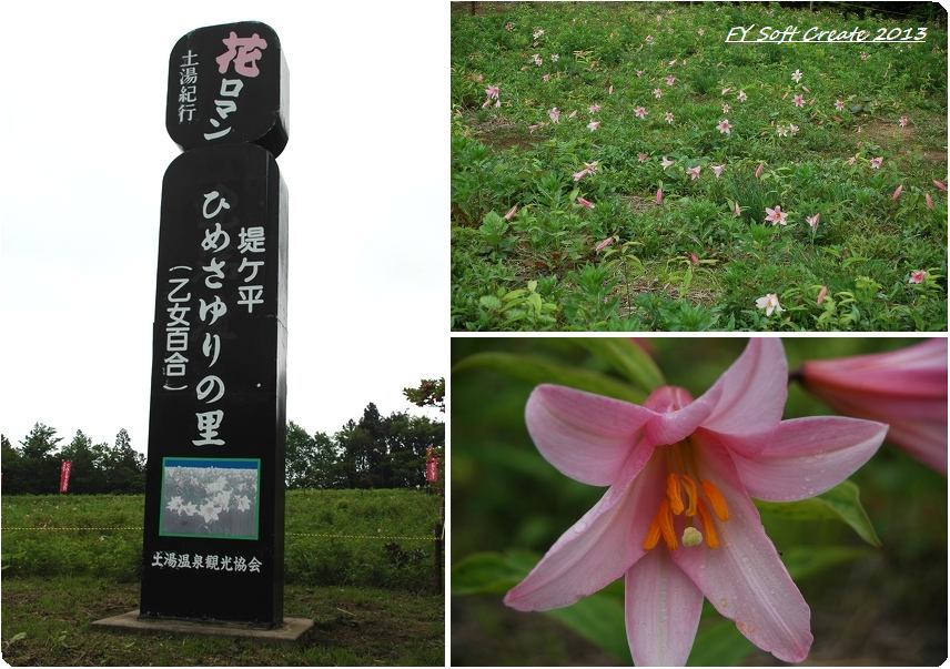 ◆ 土湯温泉 ひめさゆりの里から大内宿へ (2005年6月)_d0316868_2358276.jpg